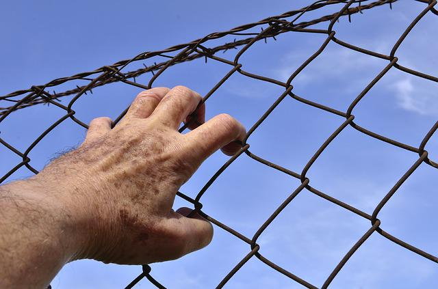 Barbed Wire, Wire, Court, Security, Prison, Hand