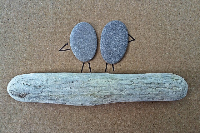 Rock, Art, Craft, Birds, Driftwood
