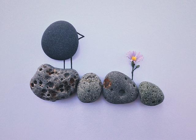 Rock, Art, Craft, Bird, Flower