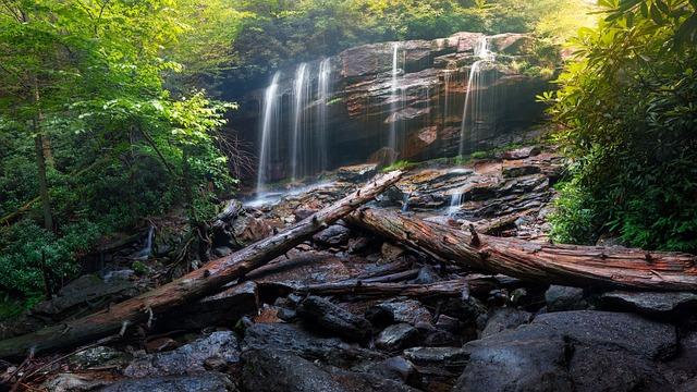 Cascade, Creek, Environment, Fall, Landscape, Leaf