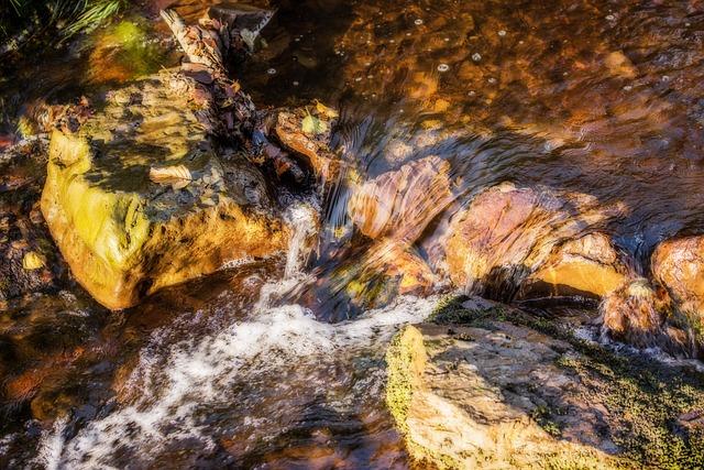 Water, Water Running, River, Creek, Waters, Nature