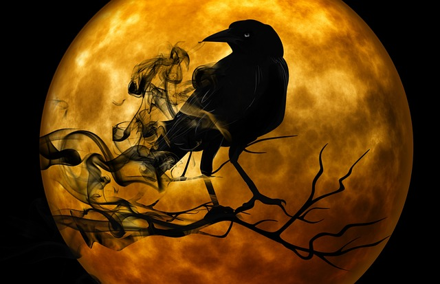 Raven, Crow, Night, Creepy, Darkness, Mystical, Gloomy