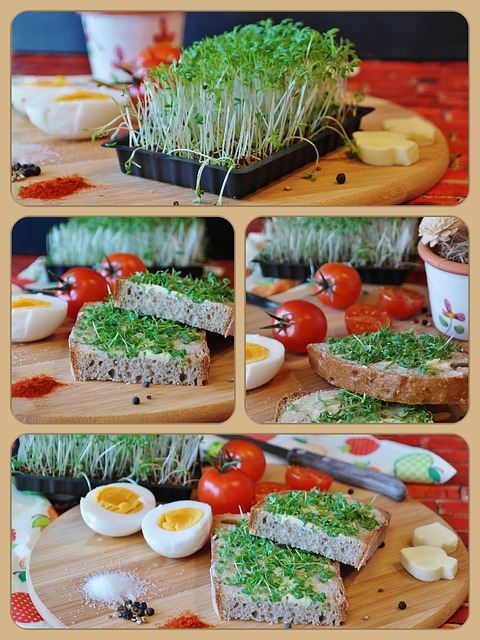 Collage, Cress, Cress Bread, Bread, Bread And Butter