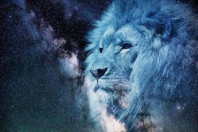 Lion, Starry Sky, Night, Blue, Animal, Crest, Hair