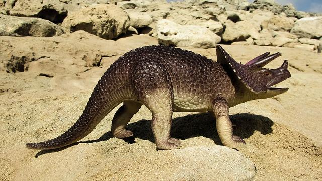 Triceratops, Dinosaur, Reptile, Cretaceous, Lizard