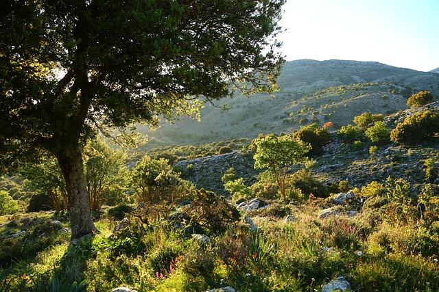 Crete, Mountains