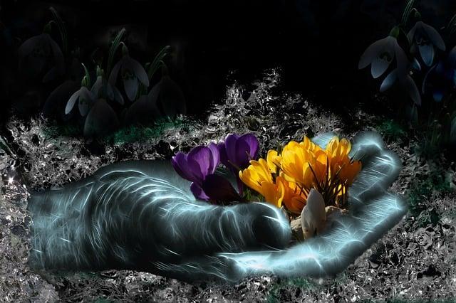 Harbinger Of Spring, Spring, Nature, Snowdrop, Crocus