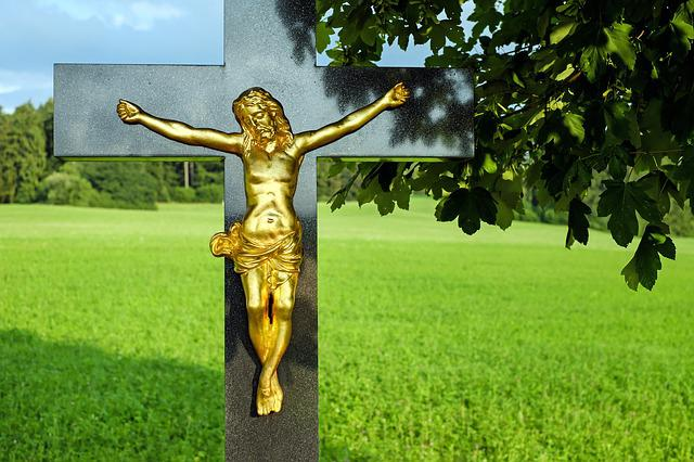 Jesus, Cross, Christ, Fig, Stone Cross, Nature