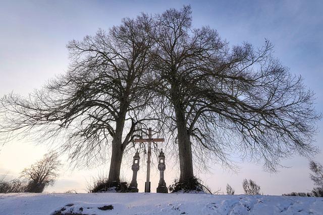 Winter, Snow, Tree, Cold, Frost, Cross, Crucifix, Dusk