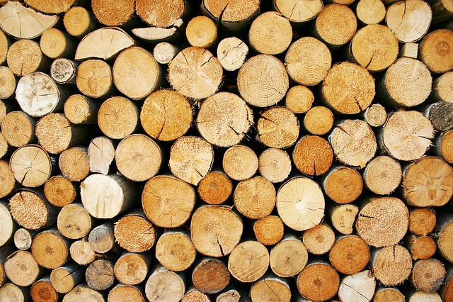 Wood, Lumber, Logs, Winter, View, Cross-section