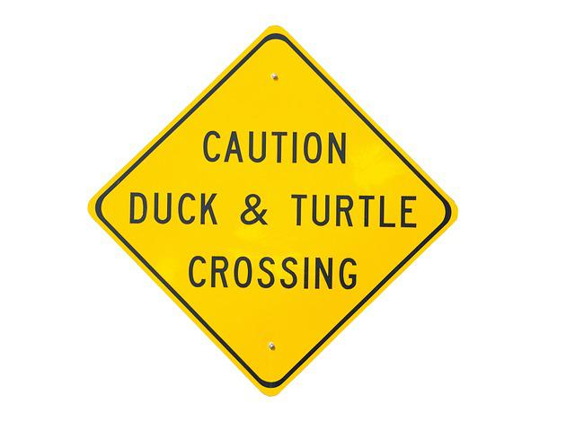 Duck And Turtle, Crossing Sign, Signage, Caution