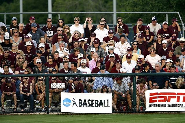 Spectators, Sports Fans, Crowd, Baseball Game