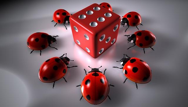Gamers Round, Gambling, Cube, Beetle, Ladybug