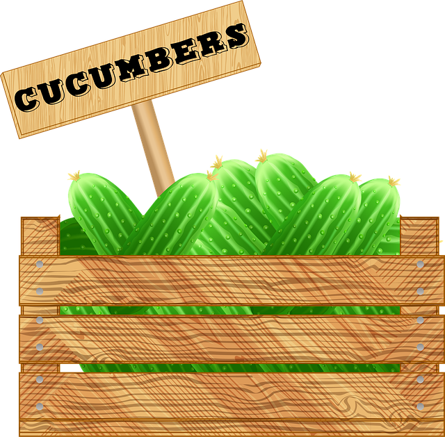 Crate Of Vegetables, Cucumbers, Wooden Box