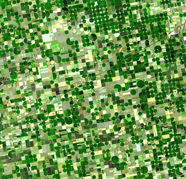 Field Cultivation, Fields, Cultivation, Agriculture