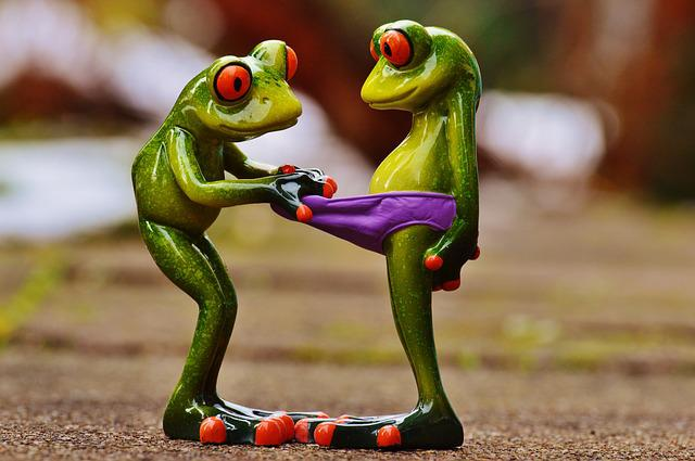 Frogs, Curious, Funny, Figures, Cute, Underpants, Look