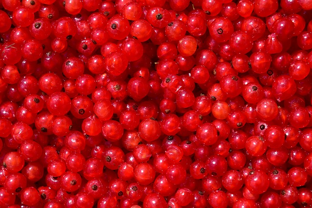 Currants, Background, Fruit, Berry, Food, Red Currant