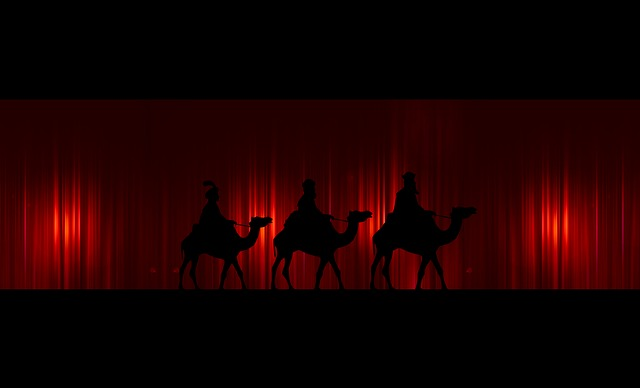 Advent, Star, Curtain, Holy Three Kings, Kings, Camel
