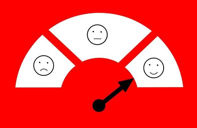 Feedback, Satisfaction, Customer, Client, Survey