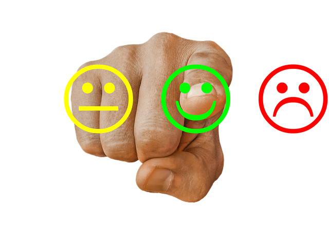Feedback, Review, Opinion, Satisfaction, Customer