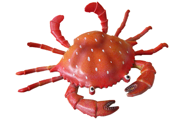 Crab, Cut, Out
