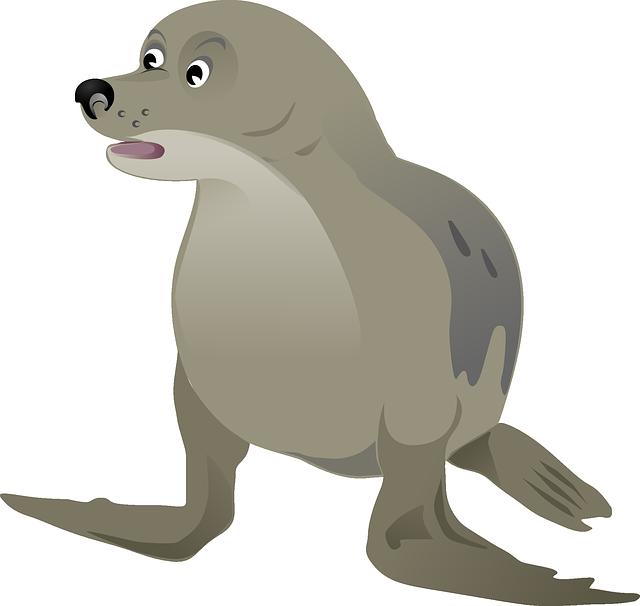 Seal, Animal, Wildlife, Mammal, Marine Mammal, Cut Out