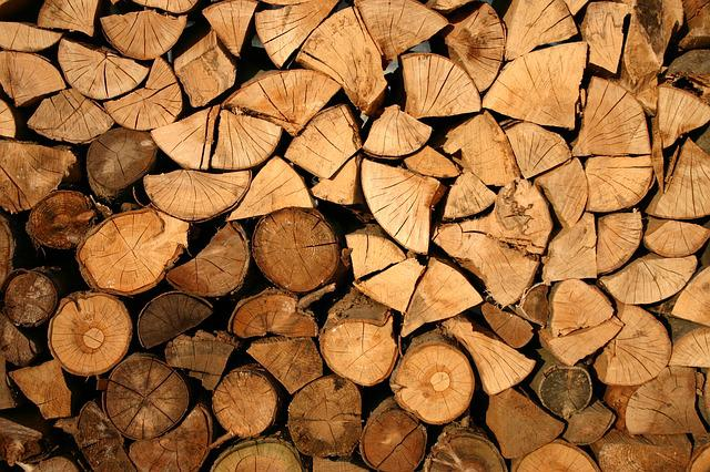Abstract, Firewood, Wooden Logs, Cut, Forestry, Logs