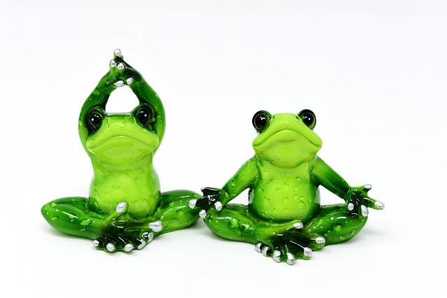 Frogs, Figures, Yoga, Funny, Cute, Fun, Decoration