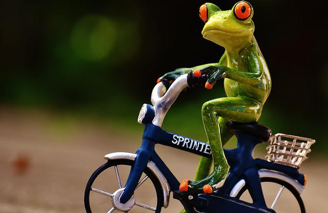 Frog, Bike, Uphill, Funny, Cute, Sweet, Fig, Drive