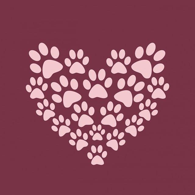 Paw Print, Paw Prints, Heart, Cute, Pink, Burgundy