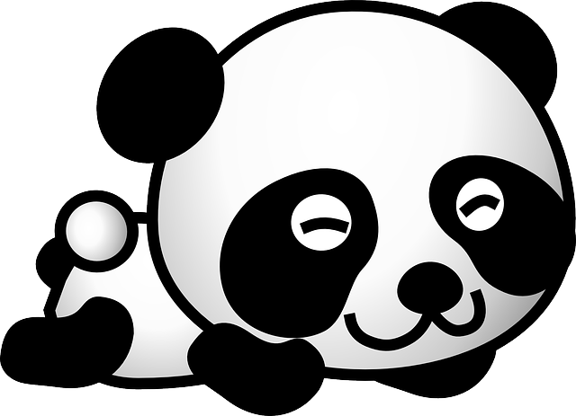 Panda, Bear, Cute, Happy, Young, Animal, Baby