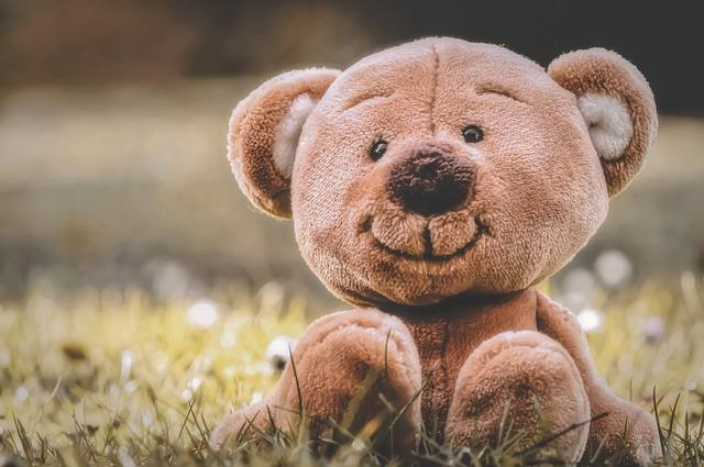 Teddy, Meadow, Soft Toy, Teddy Bear, Cute, Children