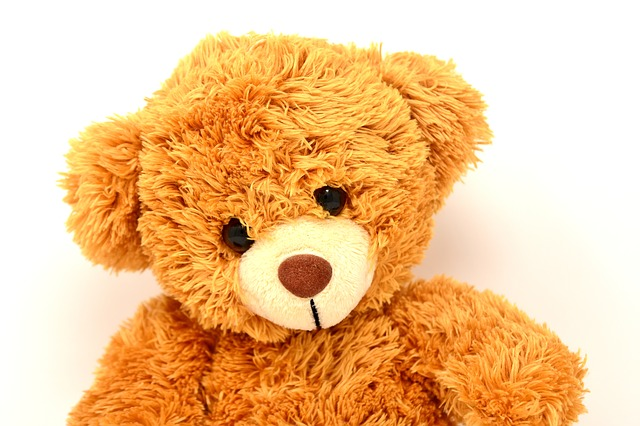 Teddy, Soft Toy, Bears, Funny, Teddy Bear, Cute