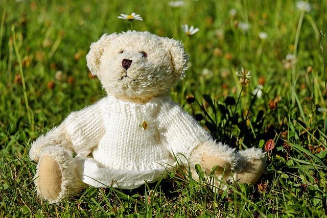 Teddy, Plush, Bears, Cute, Teddy Bear, Meadow