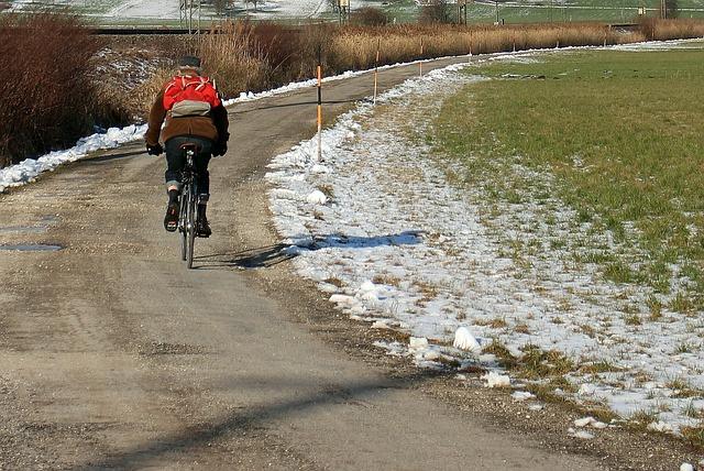 Wheel, Cycling, Bike, Cycle Path, Bicycle Path, Driving