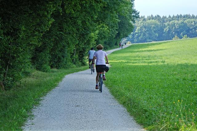 Cycling, Cyclists, Bike, Leisure, Cycle Path, Away