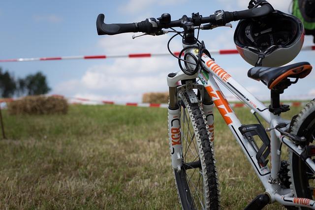 Bike, Mountain Bike, Cycling, Wheel