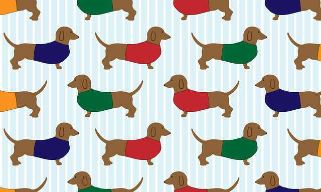 Dachshund, Dog, Cartoon, Art, Wallpaper, Paper