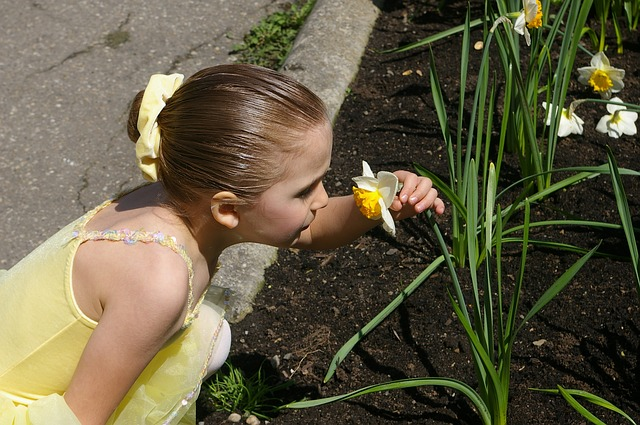 Girl, Kid, Child, Ballerina, Daffodil, Yellow, Sniffing