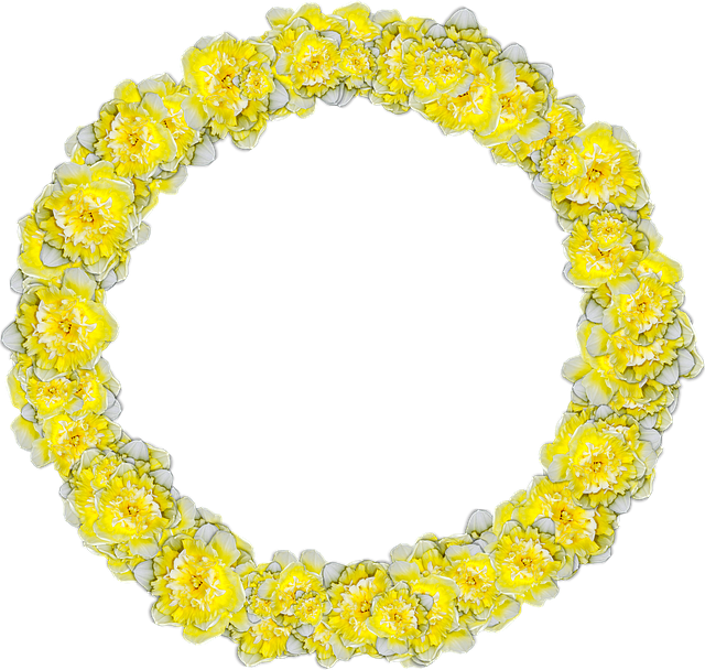 Daffodils, Circle, Narcissus, Decor, Graphics