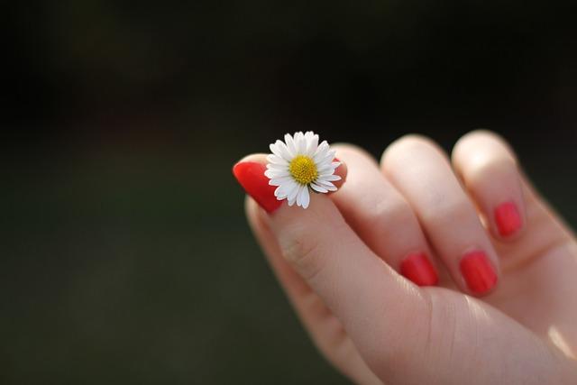 Hand, Daisy, Flower, Finger, Fingernails, Lacquered