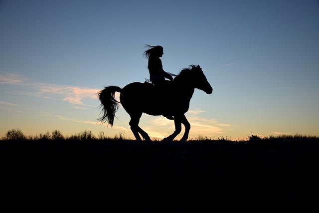 Silhouette, Sunrise, Dam, Ride, Horse, Human, Reiter