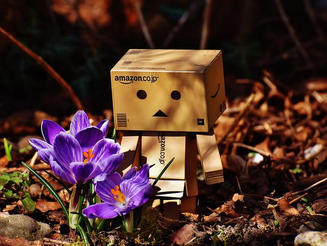 Harbinger Of Spring, Danbo, Crocus, Figure, Nature
