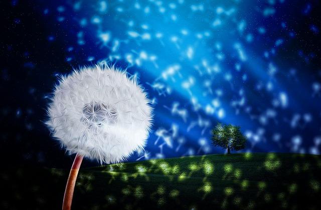 Landscape, Fantasy, Flower, Dandelion, Nature