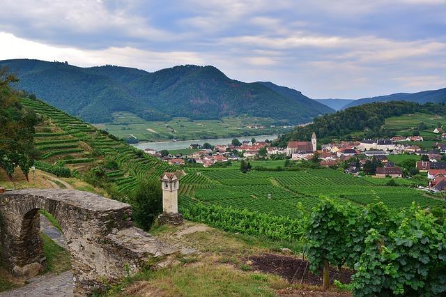 Danube, Wachau, Vineyards, Monument, Tourism, Hike