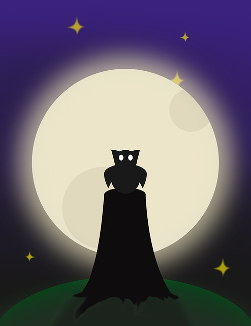 Silhouette, Desktop, Moon, Light, Dark, Evening, Owl