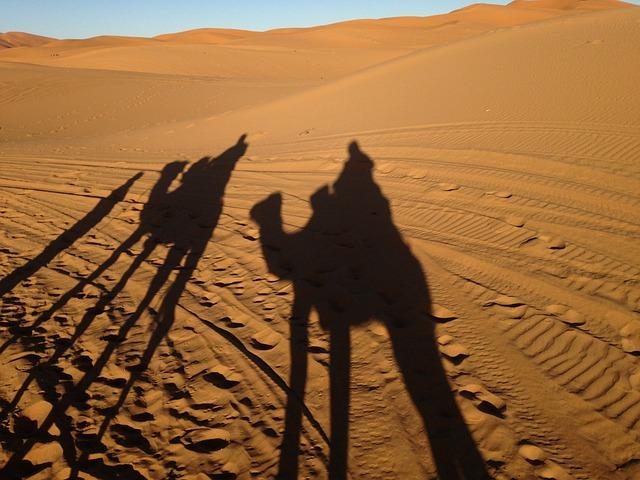 Desert, Morocco, Sahara, Darkness, Camel