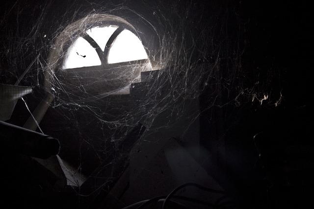 Spider Webs, Light, Old Window, Darkness