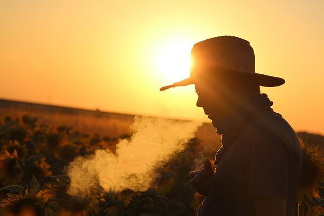 Sunset, Outdoor, Sky, Folk, Dawn, Travel, Smoke