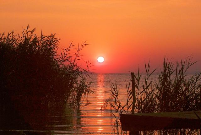 Sunrise, Dawn, Lakeside, Reed, Lake Balaton, Hungary